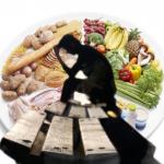 ŠTO ZNAČI NAPISANO PROVESTI U DJELO? (poveznica između plana prehrane i gotovog tanjura)